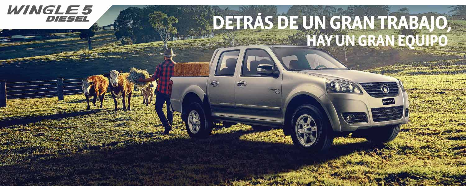 Wingle 5 Diesel Doble Cabina 2.0 VGT 4X4 LUX